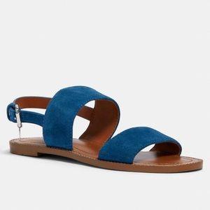 NWT COACH Henny Sandal